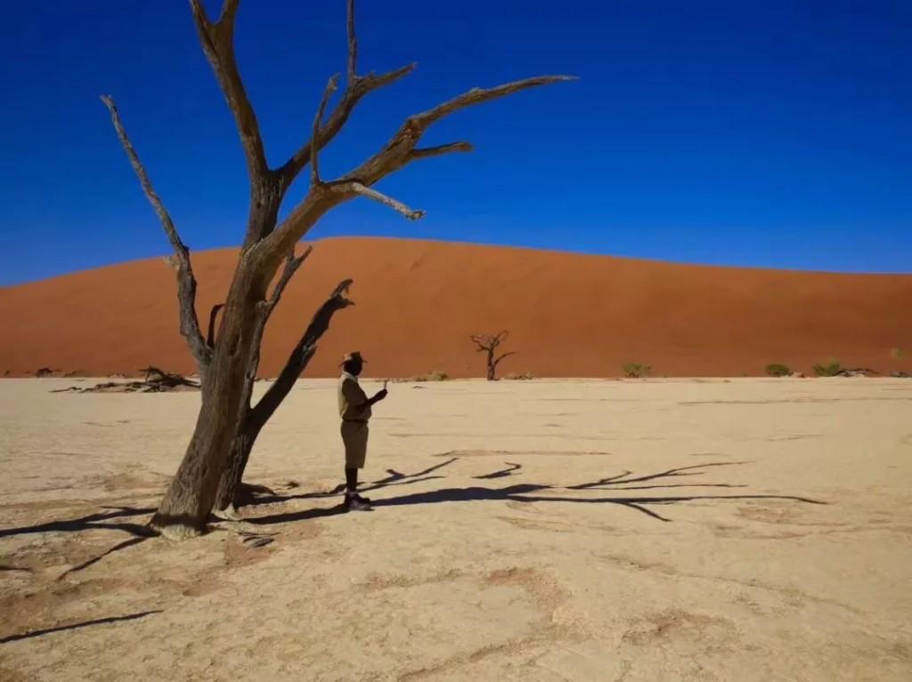 纳米比亚3