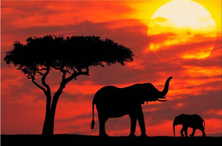 碧山旅行-肯尼亚旅游-自然景观