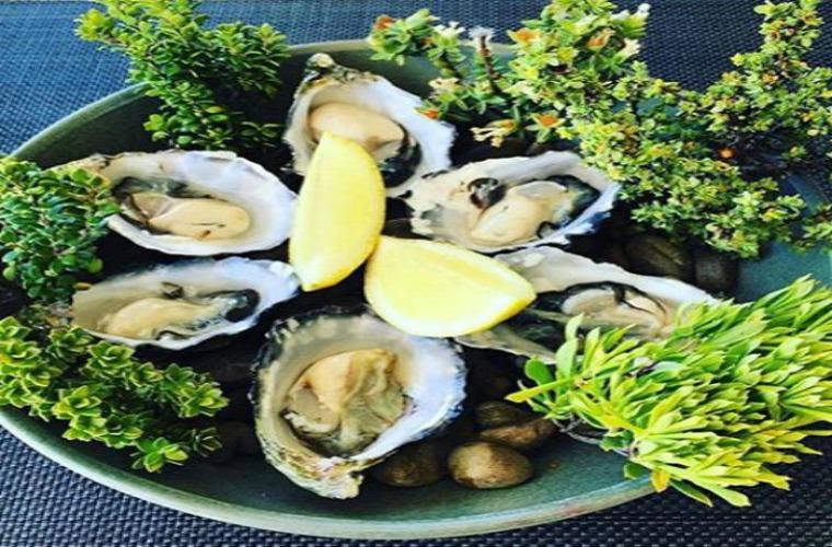 碧山旅行-澳洲旅游-享受专属美食盛宴